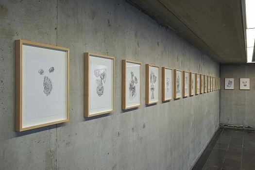 https://www.tatjanagerhard.com/cms/files/projects/painting-2017/gerhard.exhib.view.008.1600.jpg